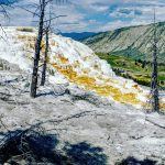 Mammoth Hotsprings with mountain backdrop