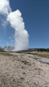 Yellowstone Old Faithfull
